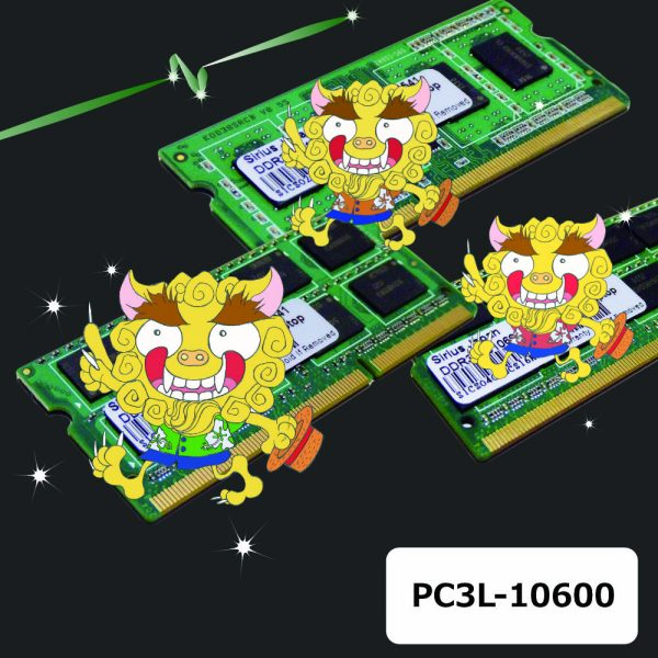 PC3L-10600N